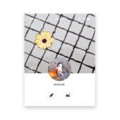 카톡프사(75x100) 32장